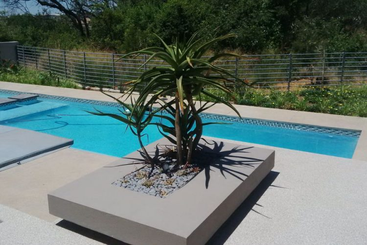 Contemporary poolside planting