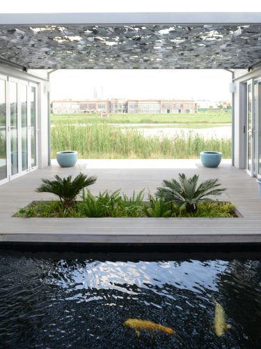 Linking the external landscape with garden plants